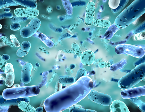 microbiome metagenomics sequencing